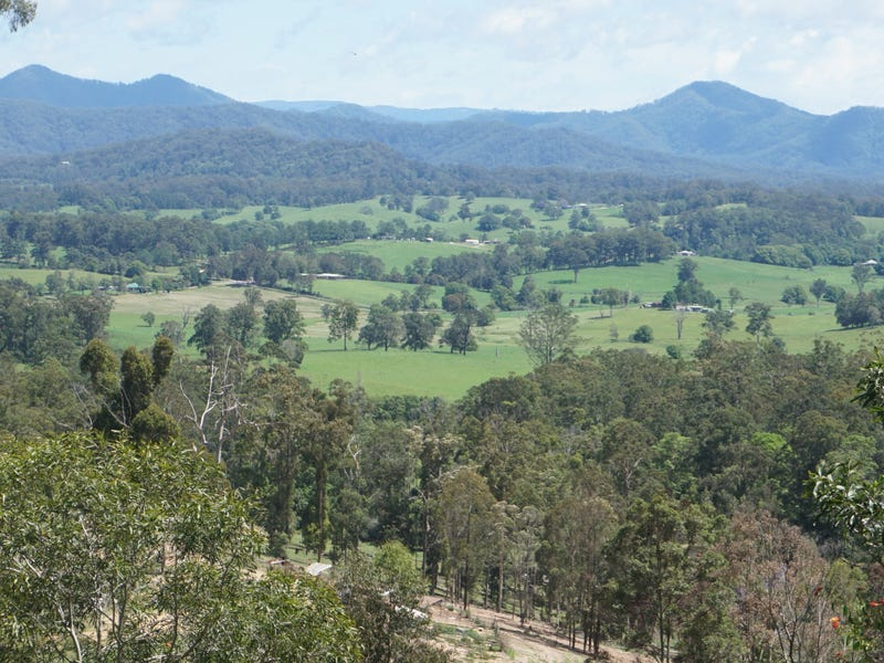 225 South Arm Road, South Arm, NSW 2449
