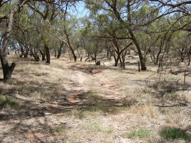 Lot 286 Yandiah-Reichstein Road Hundred of Appila, Wirrabara, SA 5481
