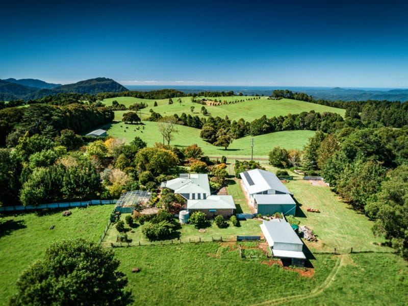 194 Mountain Top Road, Dorrigo, NSW 2453