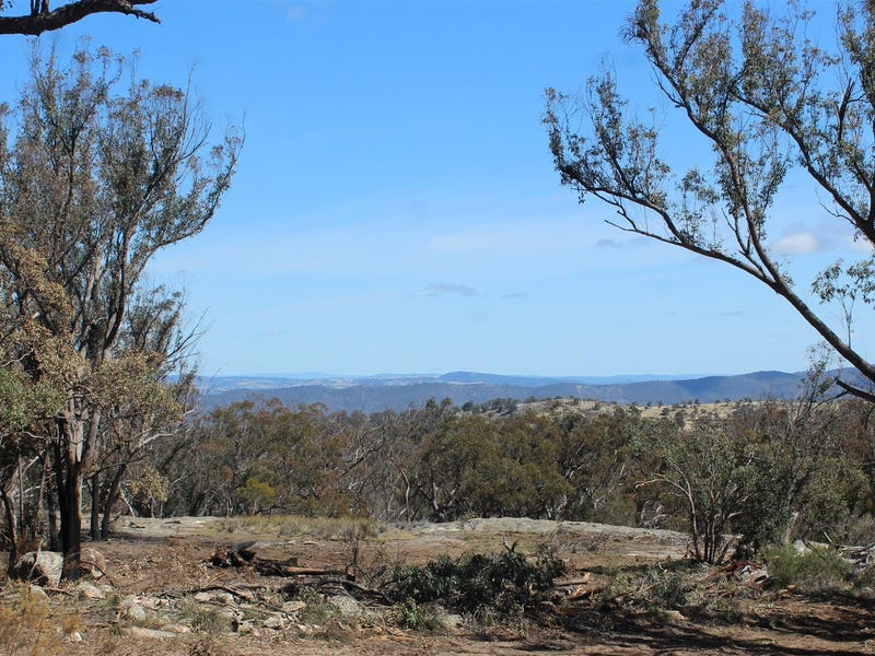 1332 Mount McKenzie Road, Tenterfield, NSW 2372