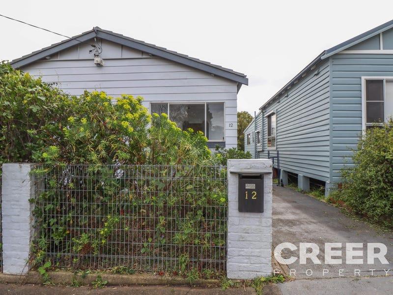 12 Robert Street, Jesmond, NSW 2299