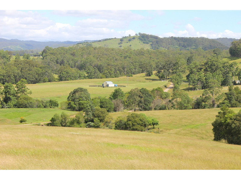 1332 Pipeclay Road, Pipeclay, NSW 2446