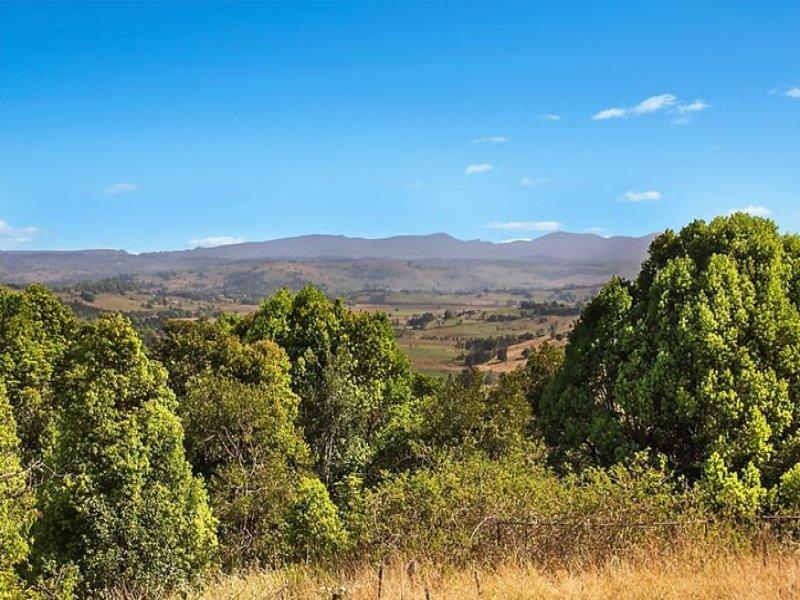 289 Cowlong Road, McLeans Ridges, NSW 2480