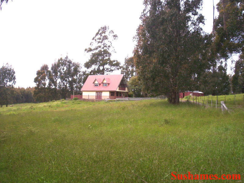 Address available on request, Staverton, Tas 7306