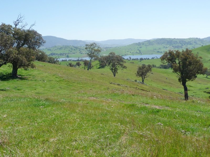 Bryants Gap Rd, Tallangatta, Vic 3700