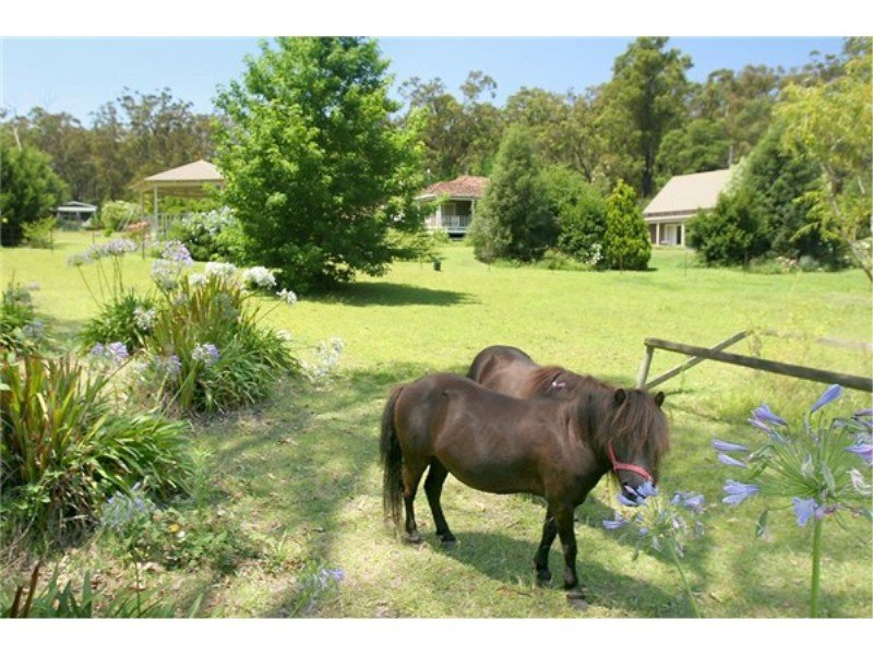 879 Princes Highway, Mogo, NSW 2536