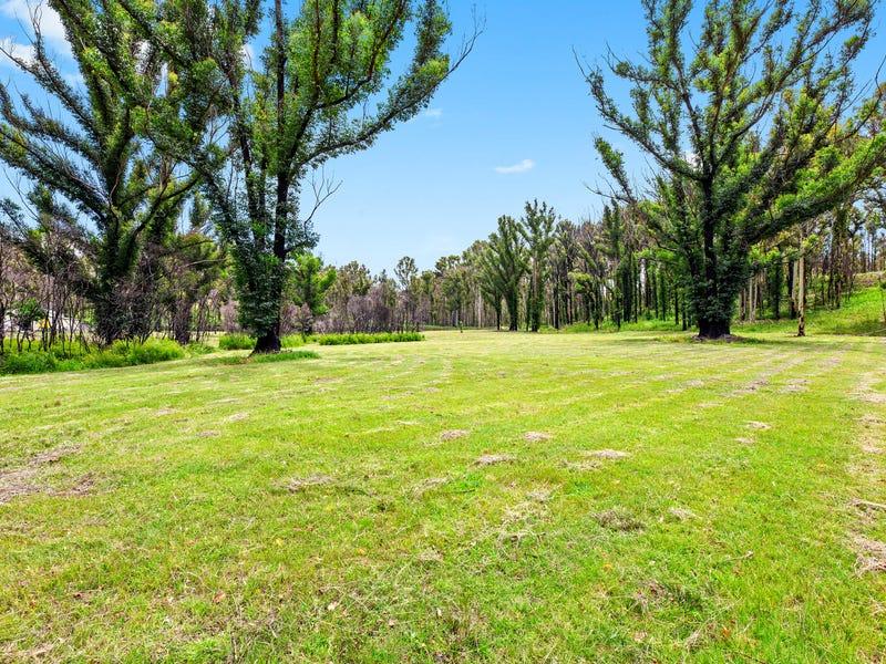 62 Jedel Drive, Catalina, NSW 2536