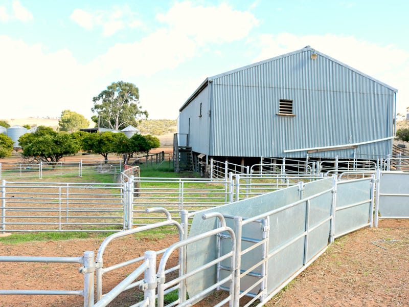 230 Woodendale Rd, Toodyay, WA 6566