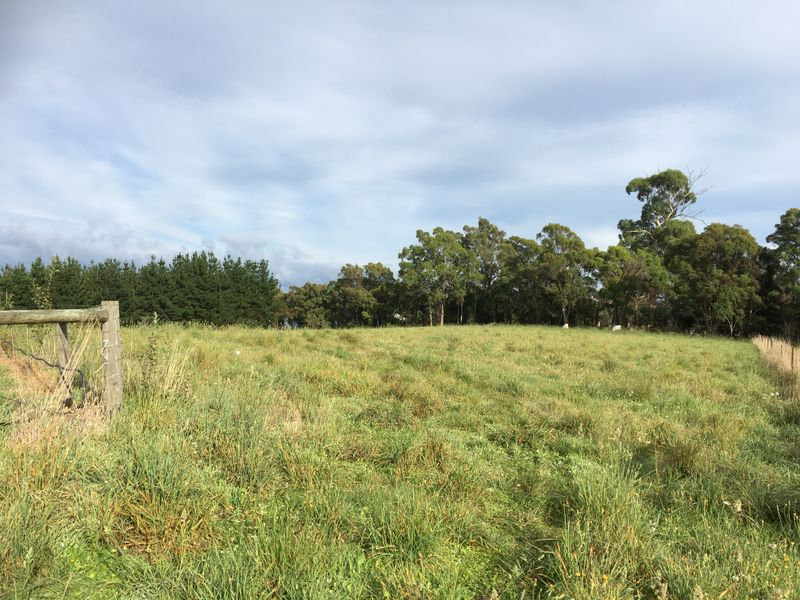 26 Marks Rise, Hillwood, Tas 7252