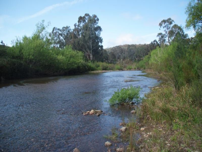 Back Wombat Road, Valencia Creek, Vic 3860