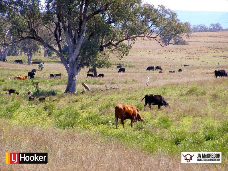 176 Mount Rodd Road, Bingara, NSW 2404