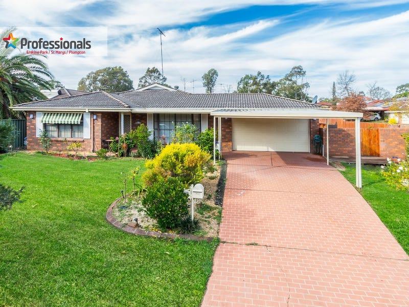 10 Kunipipi Street, St Clair, NSW 2759