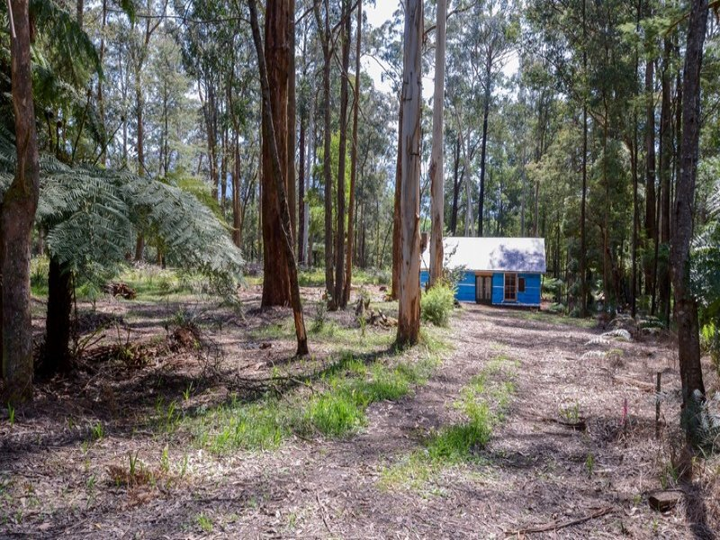 239 Big Pats Creek Road, Big Pats Creek, Vic 3799