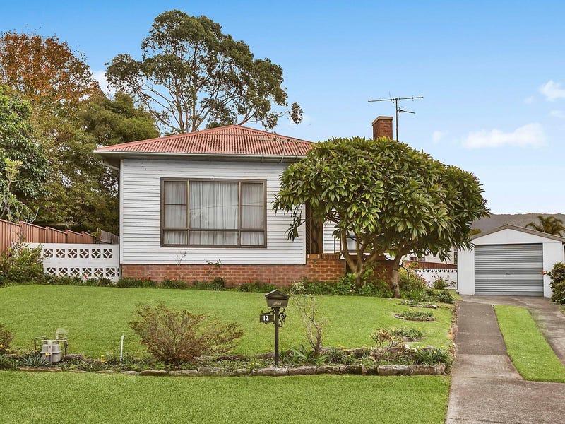 12 Matthew Street, Fairy Meadow, NSW 2519