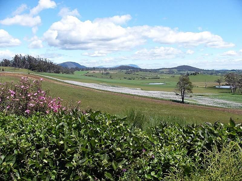 114 Cox's Road, Dairy Plains, Tas 7304