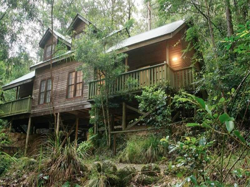 Cabin 16 Barrington Wilderness Cottages, Salisbury Road, Dungog, NSW 2420