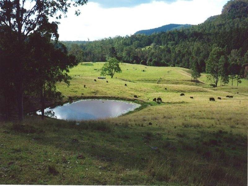 920 Smiths Creek Road, Copmanhurst, Grafton, NSW 2460