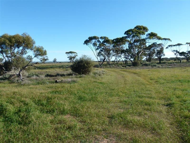 Lot 737 Linkes Woolshed Road, Steinfeld via, Truro, SA 5356