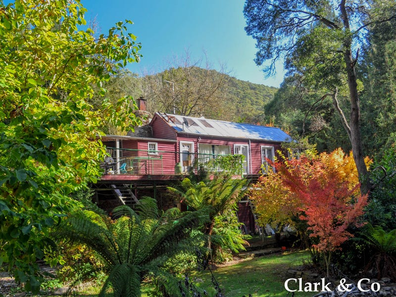 7439 Mansfield-Woods Point Road, Gaffneys Creek, Vic 3723