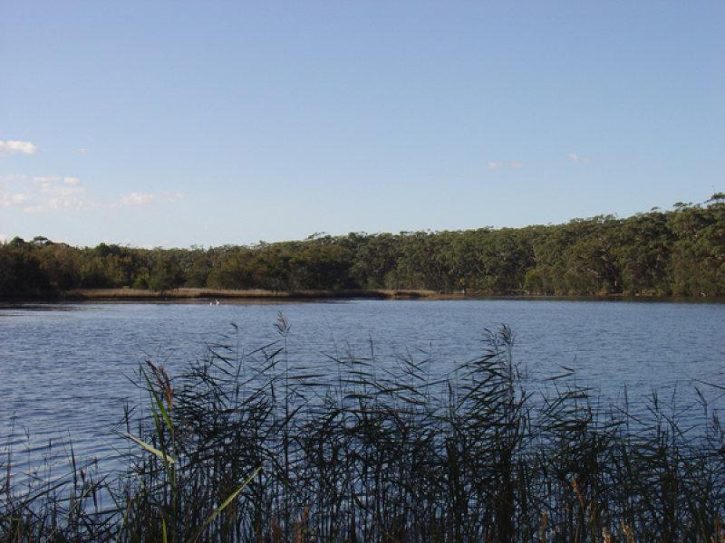 14 Oak Avenue, Lake Tabourie, NSW 2539