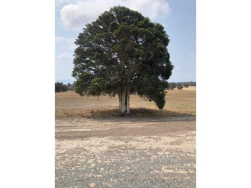 183 Tea Tree Lane, Nowra Hill, NSW 2540