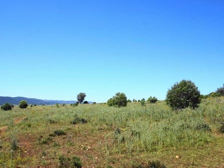 COBBADAH ROAD, Bingara, NSW 2404