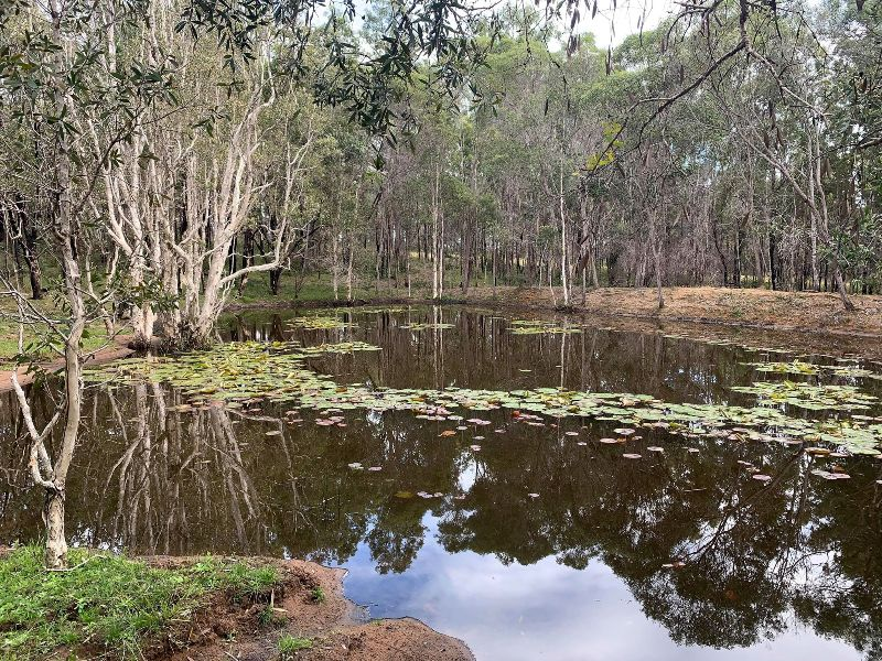 Lot 9, Clearview Road, Coutts Crossing, NSW 2460