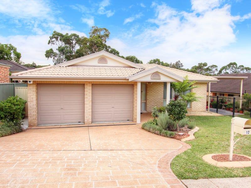 12 Merlot Close, Bonnells Bay, NSW 2264