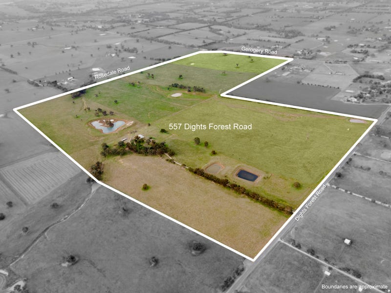 557 Dights Forest Road, Table Top, NSW 2640
