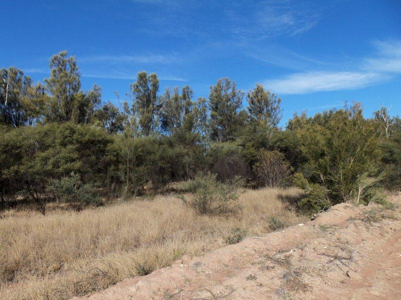 Lot 1 Upper Humbug Rd, Tara, Qld 4421