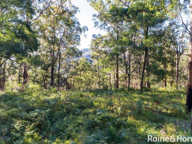 Lots 1, 3 & 4 Selbys Road, Budgong, NSW 2577