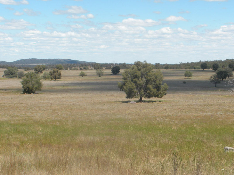 KESWAY, Trundle, NSW 2875