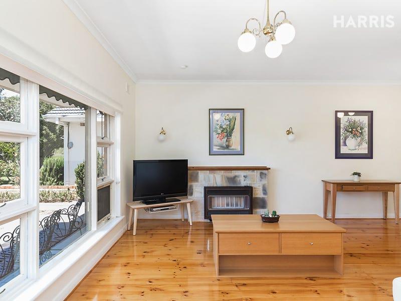 14 Raffles Crescent, Plympton, SA 5038