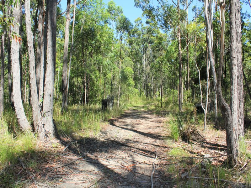 Lot 2, 3850 Pacific Highway, Corindi Beach, NSW 2456