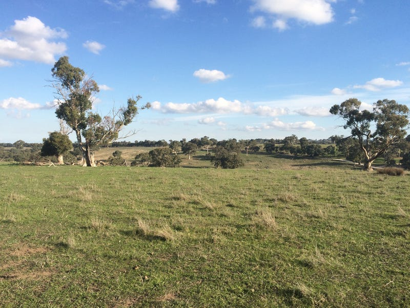 Lot 13 Wiles Fire Track Road, Wistow, SA 5251