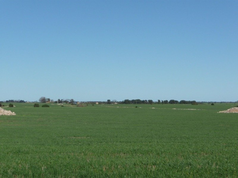 Lot 9 Harry Butler Road, Yorketown, SA 5576