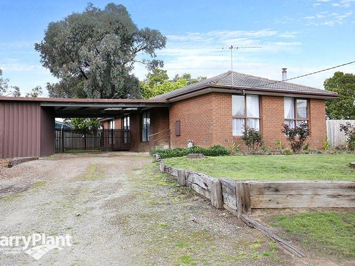 55 Lauriston Drive, Coldstream, Vic 3770