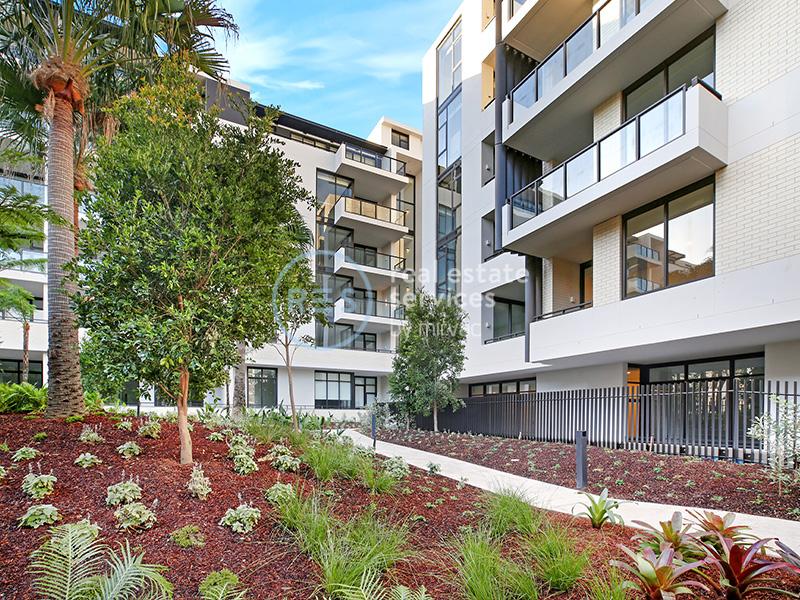 1603/15 Lachlan Street, Waterloo, NSW 2017