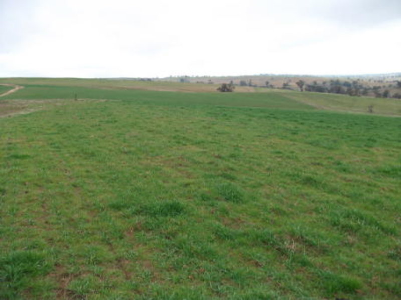 McMahons Road, Harden, NSW 2587