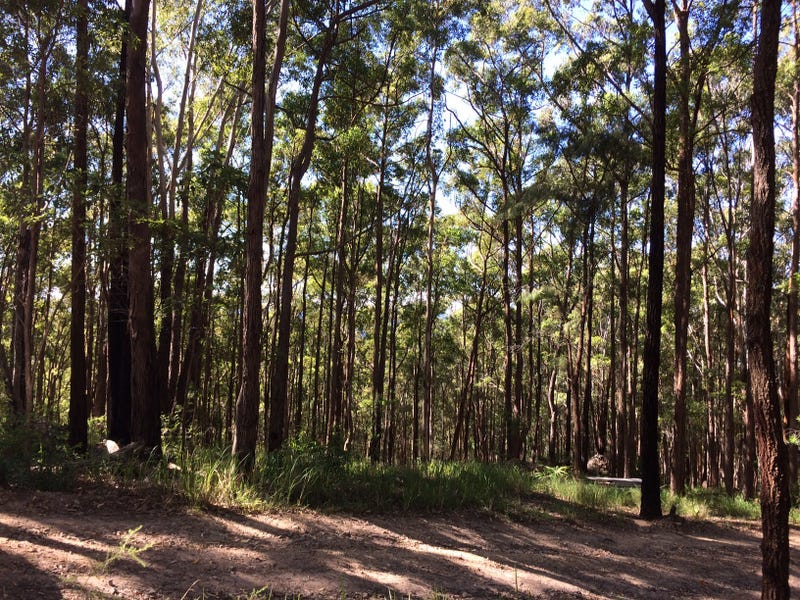701 Coomba Road, Whoota, NSW 2428