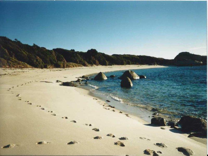 . Long Beach Road, Cape Barren Island, Cape Barren Island, Tas 7257