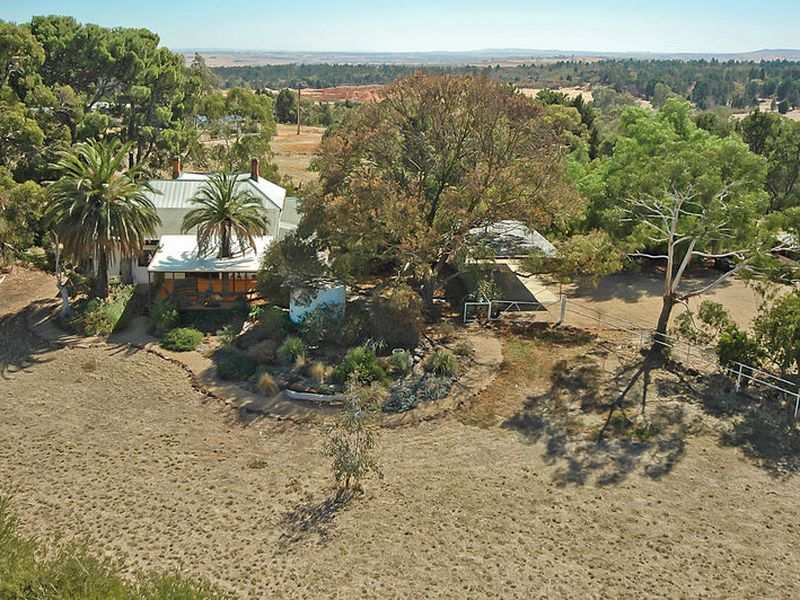 250 Pimpala Road, Sandy Creek, SA 5350