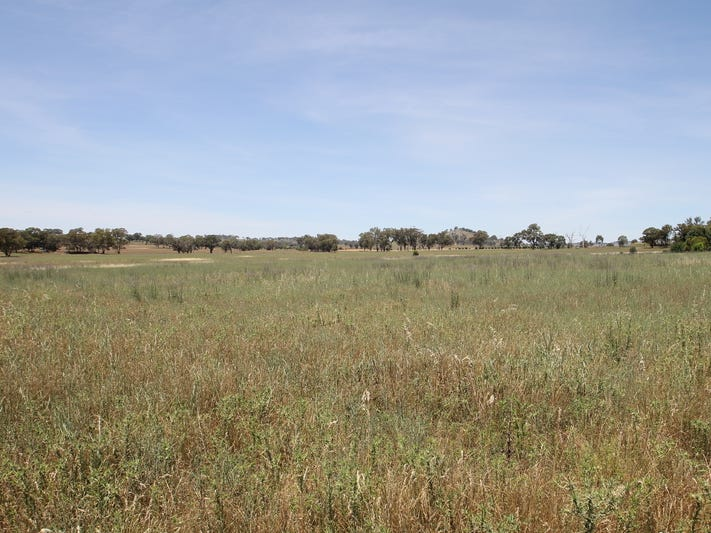 1, 168 & 6, 168 Bergalin Road, Gulgong, NSW 2852