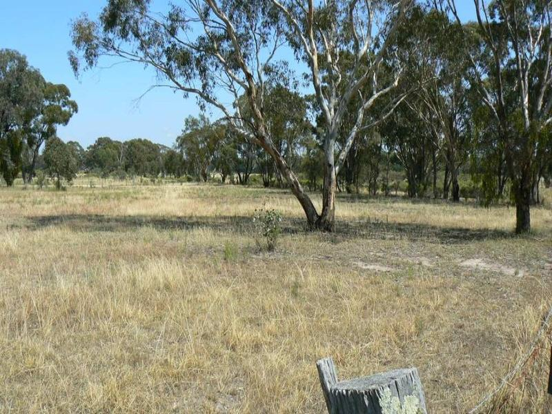 42 BYWONG LANE, Yarrawonga, NSW 2850