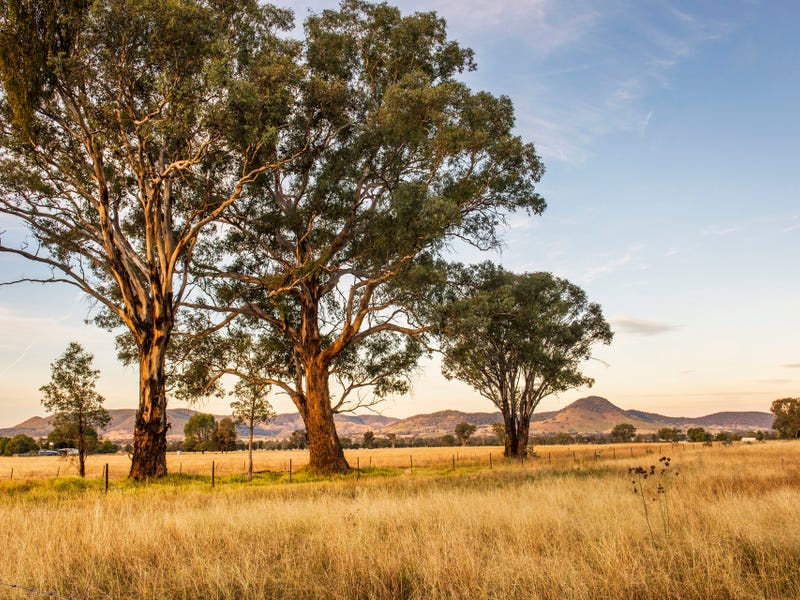 Lot 37, Broadhead Road, Mudgee, NSW 2850