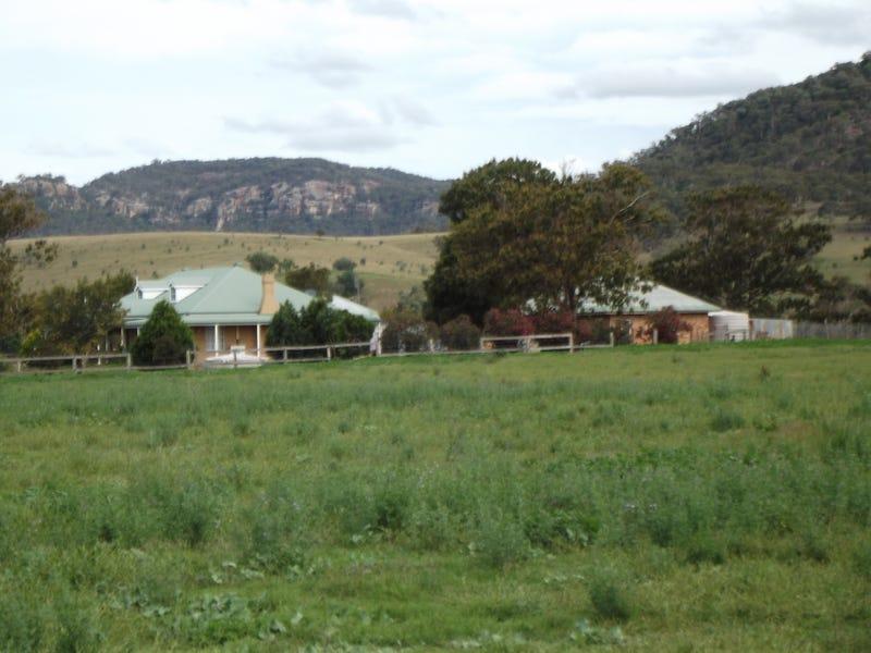 100 Yarrawa Deviation Road, Denman, NSW 2328