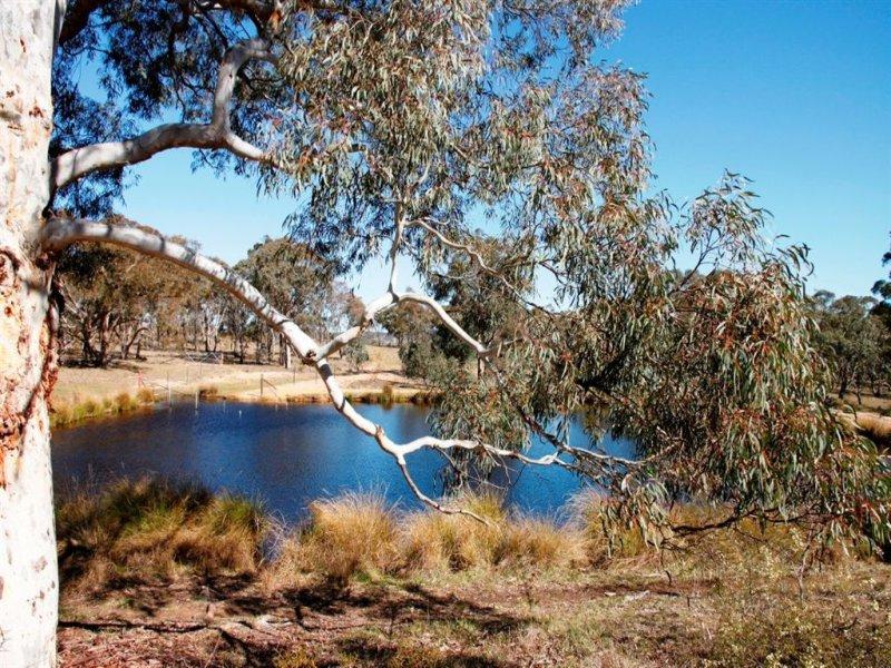2214 Blakney Creek Road, Dalton, NSW 2581