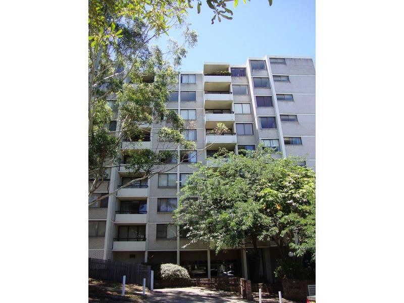 77/244 Alison Road, Randwick, NSW 2031
