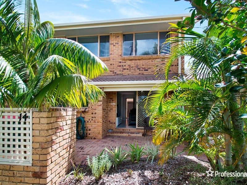 14/161 Tamar Street, Ballina, NSW 2478