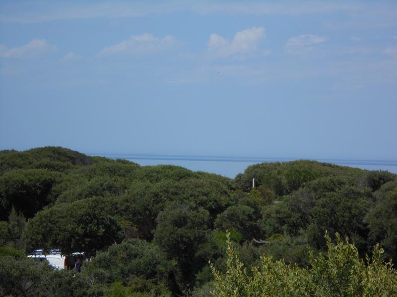 2 Beech Crt, Sandy Point